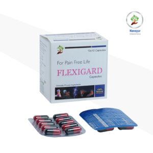 Flexigard