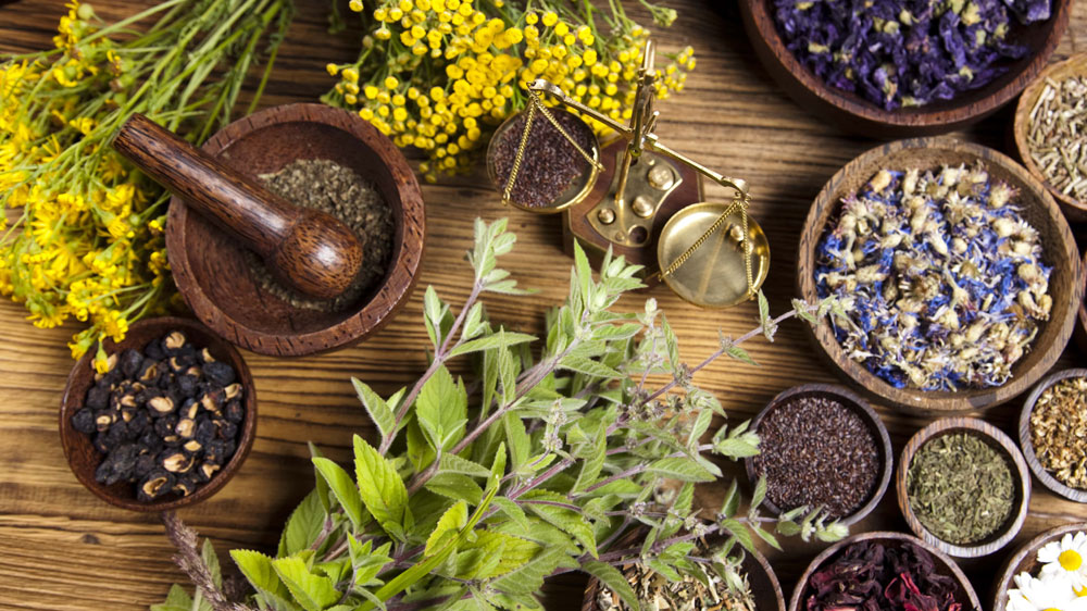 What are the Requirement to Start Ayurvedic Marketing Company